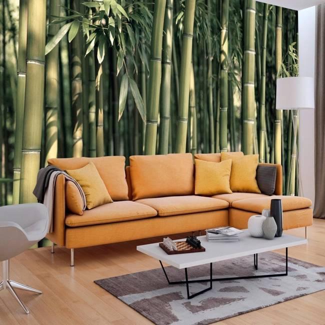Fototapeta - Bambusowa egzotyka