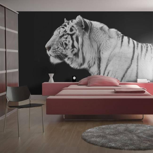 Fototapeta - Biały tygrys
