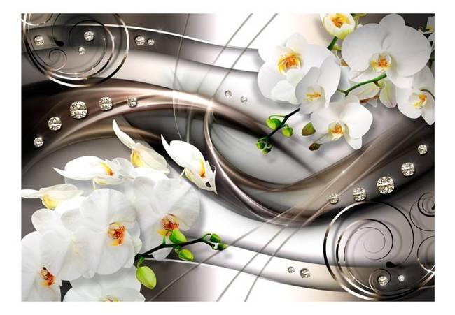 Fototapeta - Bryza i orchidea