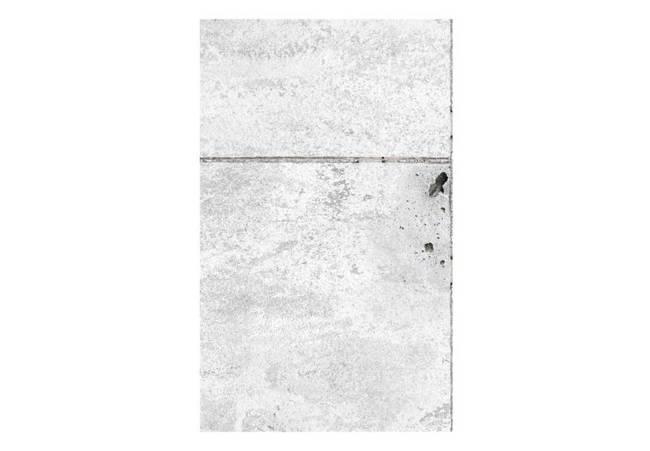 Fototapeta - Concretum murum