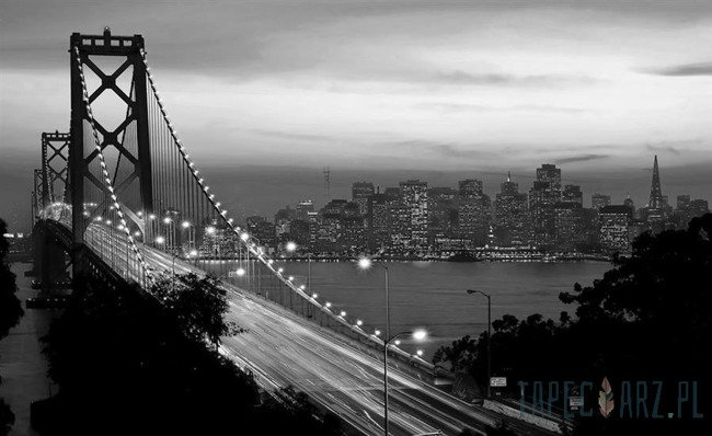 Fototapeta Czarno-biały Golden Gate Bridge 419
