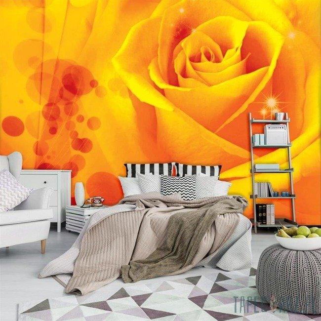 Fototapeta Herbaciana róża z odbłyskami 580