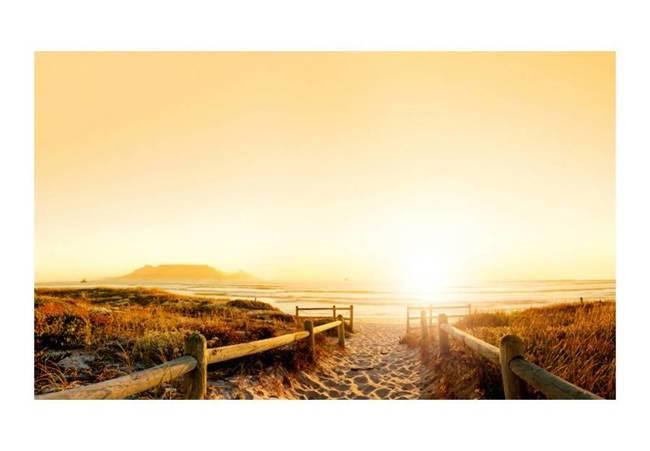 Fototapeta - Iść w stronę słońca...