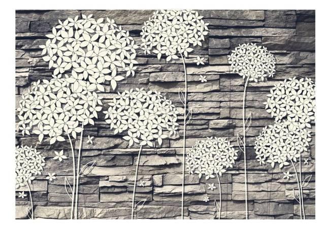 Fototapeta - Kamienne kwiaty
