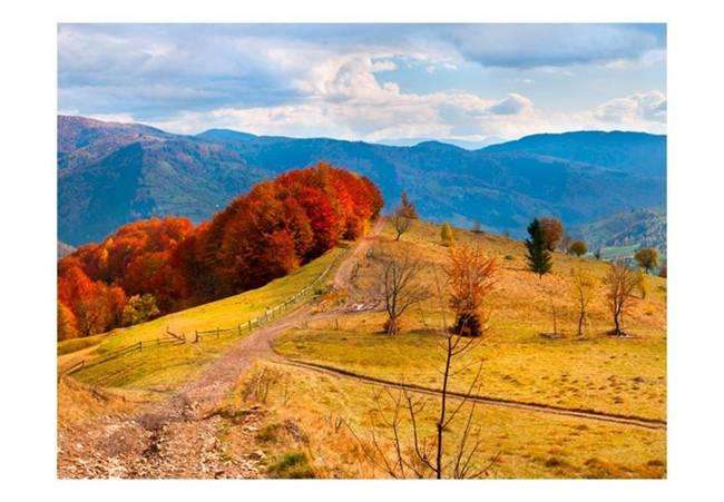 Fototapeta - Kolorowy jesienny pejzaż, Karpaty