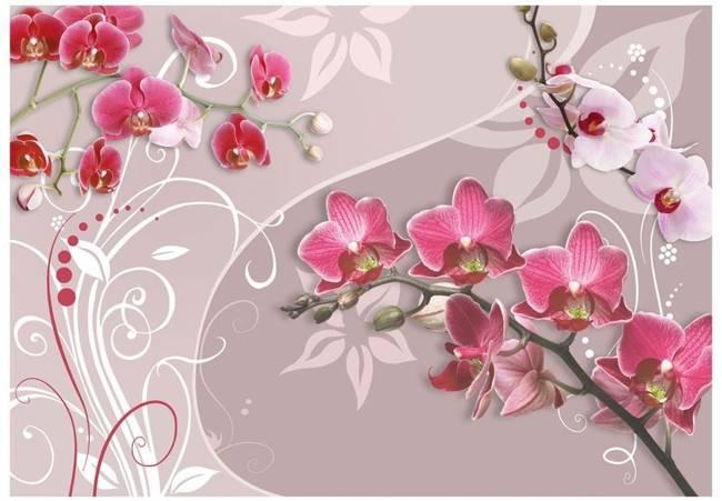 Fototapeta - Lot różowych orchidei