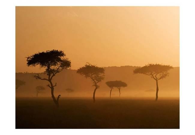 Fototapeta - Massai Mara