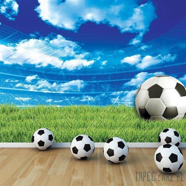 Fototapeta Piłka nożna na murawie 3388