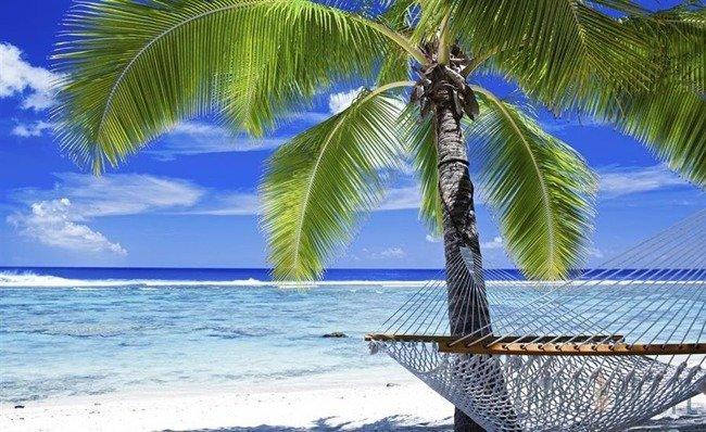 Fototapeta Plaża z palmą i hamakiem 578
