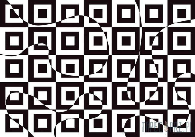 Fototapeta czarno-biała abstrakcja 3736