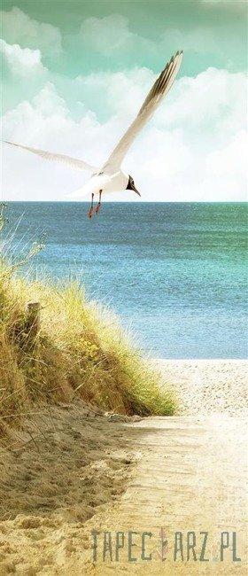Fototapeta na drzwi Mewa - plaża 11595VET/SKT