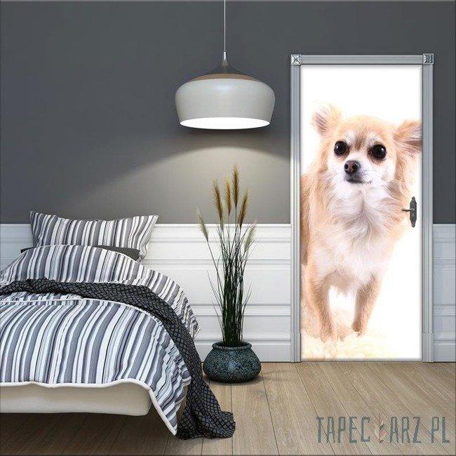 Fototapeta na drzwi Pies 11377VET/SKT