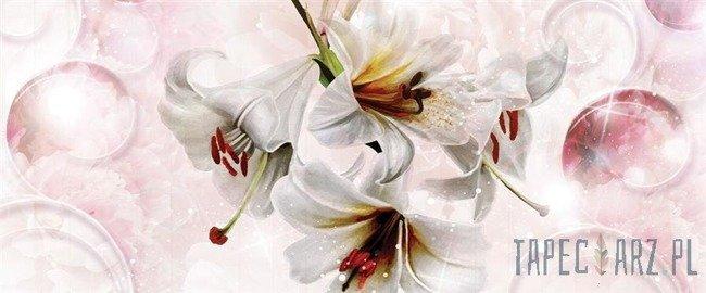Fototapeta na flizelinie Białe kwiaty 3534VEP
