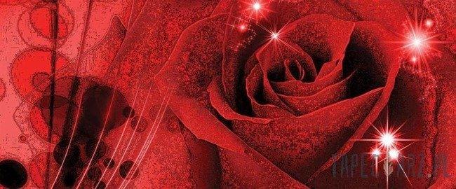 Fototapeta na flizelinie Czerwona róża 339VEP