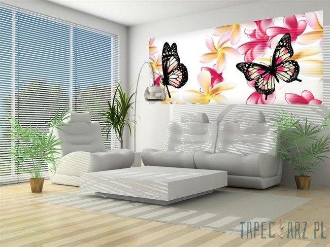 Fototapeta na flizelinie Motyle i kolorowe kwiatki 558VEP