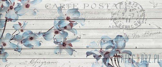Fototapeta na flizelinie Niebieskie kwiaty na deskach 3545VEP