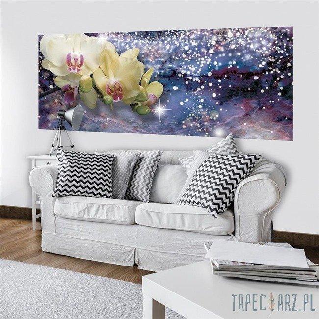 Fototapeta na flizelinie Orchidea 3188VEP