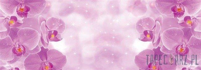 Fototapeta na flizelinie Różowe kwiaty 1497VEE