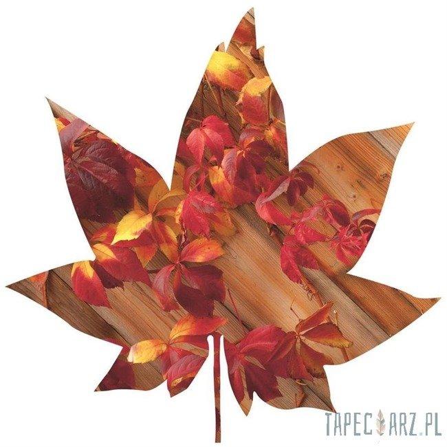 Fototapeta w kształcie liścia - Czerwony bluszcz na deskach 903