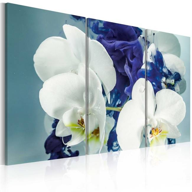 Obraz - Chimeryczne orchidee