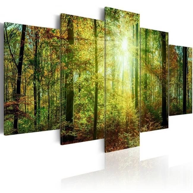 Obraz - Leśna knieja