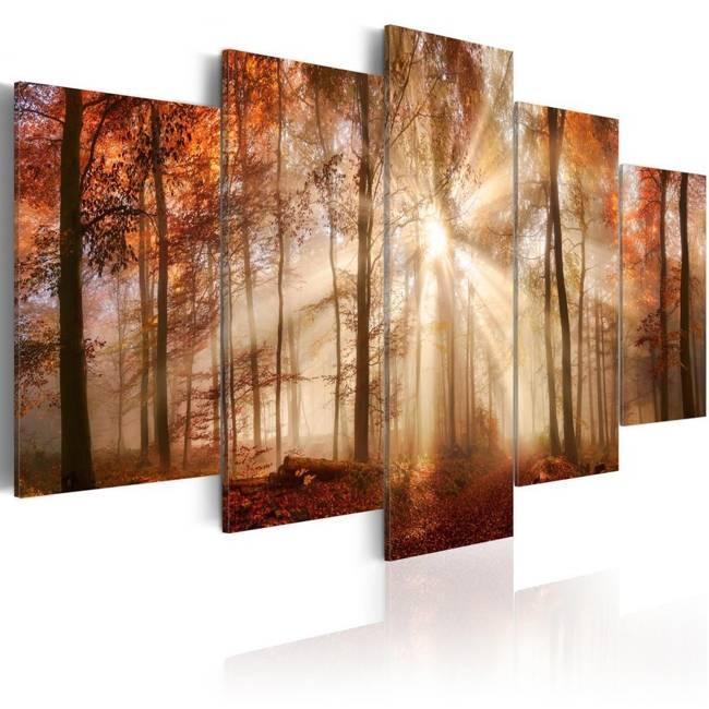 Obraz - Leśna mgła