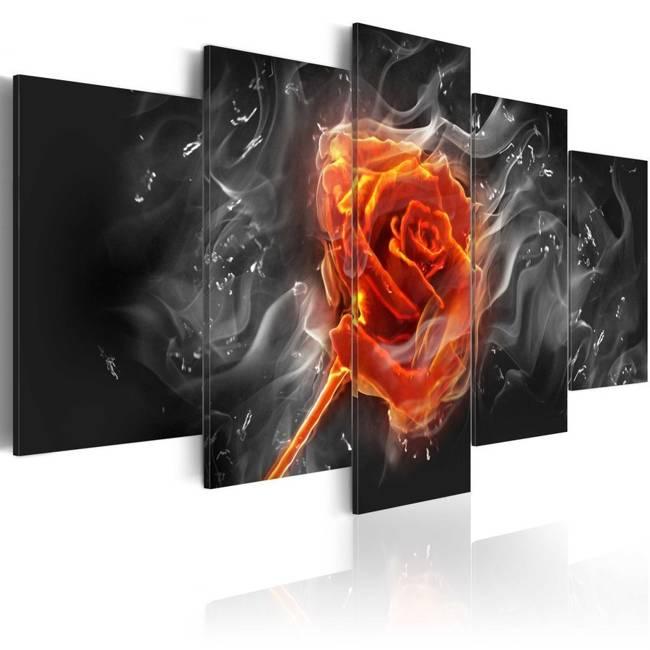 Obraz - Ognista róża