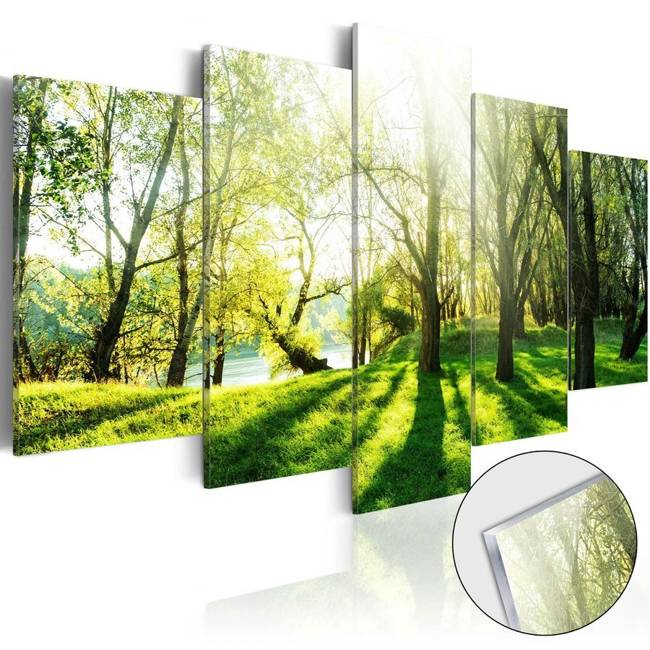 Obraz na szkle akrylowym - Zielona polana [Glass]