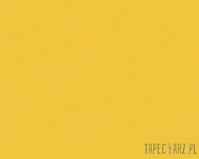 Tapeta ścienna AS Creation 3096-55 Colors of the World
