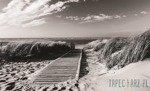 Fototapeta Czarno-biała plaża 1022
