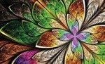 Fototapeta Kolorowe abstrakcyjne wzory 646