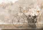 Fototapeta Rower z kwiatami 3667