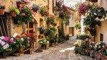 Fototapeta Urokliwa uliczka kwiatowa 1339